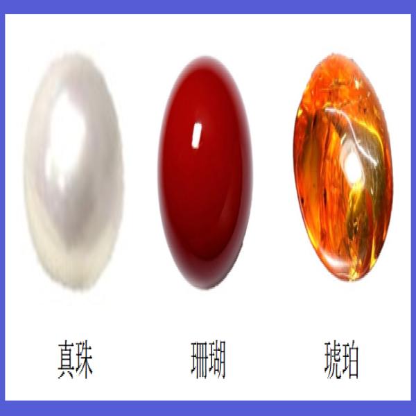 有機物の宝石
