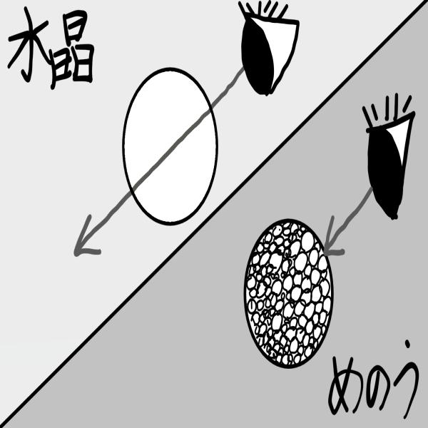 「水晶」と「瑪瑙」の違いのイメージ
