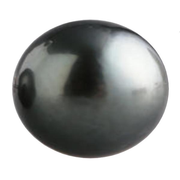 クロチョウ養殖真珠