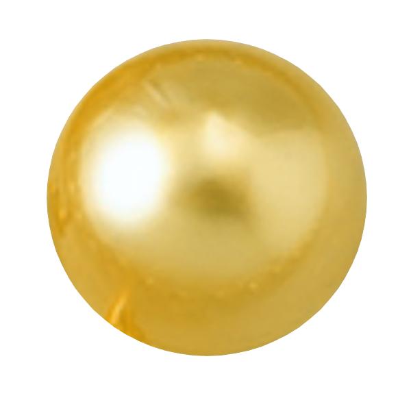 シロチョウ養殖真珠(ゴールド系)